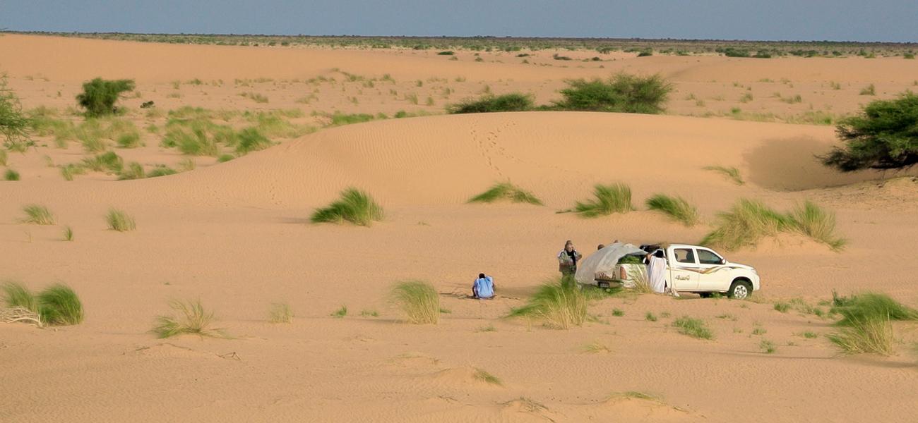 Le Sothiou - Mission Mauritanie novembre 2007