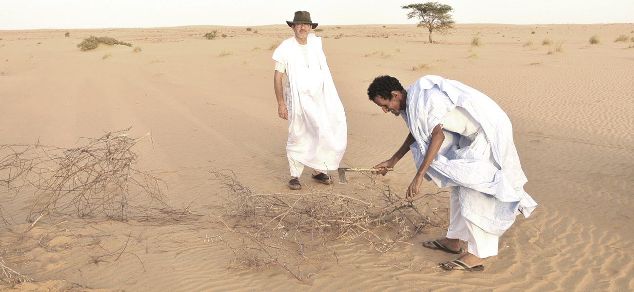 Le SOthiou - Mission à venir en Mauritanie
